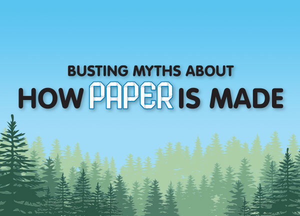 Busting Myths About How Paper is Made
